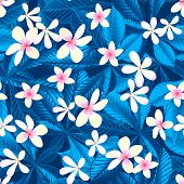 Tropical Frangipani Floral Seamless Pattern