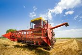 stock photo of combine  - Combine harvester harvesting wheat on sunny summer day - JPG