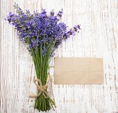 Lavender On Vintage Wood