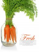 Fresh carrots with leaves in glass jar isolated
