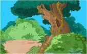 Cartoon tropical forest vegetation background