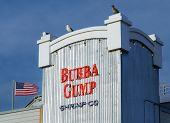 Bubba Gump Restaurant Exterior