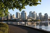 Morning Seawall View Vancouver