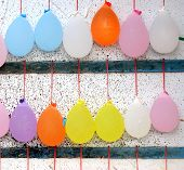 Colorful Balloons Filed With Water