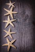 Marine Items On Wooden Background