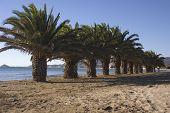 Playa del morrongo Benicarlo