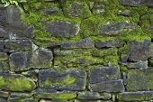foto of green wall  - Old gray stone wall with green moss texture background close up - JPG