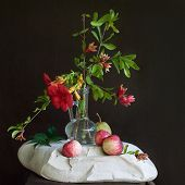 Flowers, Apples, and Stones