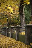 stock photo of old stone fence  - Autumn leaves have covered the sidewalk along an old stone fence - JPG