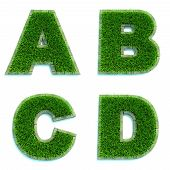 Letters A, B, C, D as Lawn - Set of 3d.