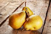 Three Juicy Ripe Pears