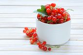 sweet juicy ripe red currants in a white bowl