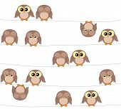 picture of owls  - Illustration of cute owls on white background owls pattern - JPG