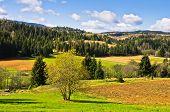 stock photo of serbia  - Radocelo mountain landscape at autumn sunny day - JPG