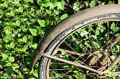 Rusty wheel of broken down bike