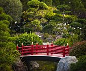 picture of ponds  - Red bridge over pond in Japanese garden - JPG