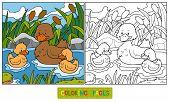 stock photo of baby duck  - Game for children - JPG