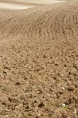 picture of plow  - Texture of a plowed field - JPG