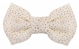 pic of bow tie hair  - White hair bow tie with shiny glitters - JPG