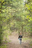 ������, ������: Walking In The Woods