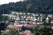Black Forest Region / Schwarzwald Scenery, Southwestern Germany