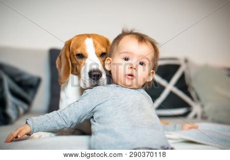 poster of Baby With A Beagle Dog In Home