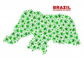Vector Marijuana Rio Grande Do Norte State Map Mosaic. Concept With Green Weed Leaves For Marijuana  poster