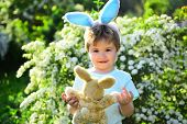 Love Easter. Family Holiday. Egg Hunt On Spring Holiday. Happy Easter. Childhood. Little Boy Child I poster