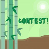 Conceptual Hand Writing Showing Contest. Business Photo Text Game Tournament Competition Event Trial poster