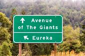 Highway Sign For Eureka And The Avenue Of The Giants Near Humboldt Redwoods State Park In California poster