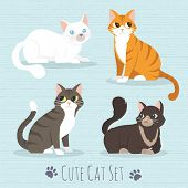Cat Set, With Whitet, Grey, Orange, Brown Cats Flat Icons. Vector Illustration Cartoon poster