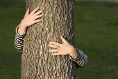 picture of planting trees  - young generation embracing nature with a hug at a tree - JPG