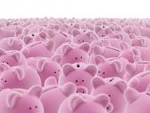 stock photo of mustering  - Large group of pink piggy banks - JPG