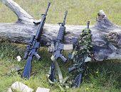 militares armas de airsoft em uma clareira perto de uma madeira