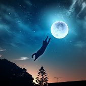 pic of goodnight  - Image of cat in jump catching moon - JPG
