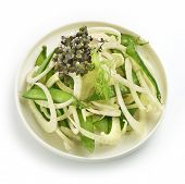 Healthy Fennel Salad With Sugarsnaps