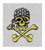 stock photo of gold tooth  - Pirate Skull - JPG