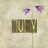 Erdigen Hintergrund und Design-Element, die das Wort für den Monat Juli
