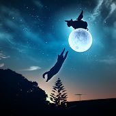 foto of goodnight  - Silhouettes of animals in night sky with full moon - JPG