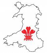 Wales Fleur De Lis