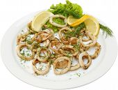 stock photo of testis  - Fish salad with squid rings and testy herbs - JPG