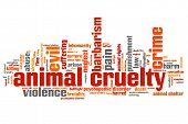 Animal Violence