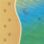 Dog Beach With Footsprint