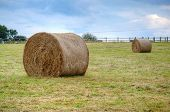 Hay Stacks On A Field