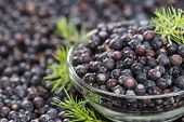 Juniper Berries Background Image