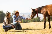 stock photo of cowboys  - cowboy and cowgirl playing with foal in the ranch - JPG