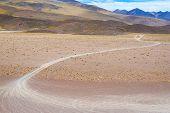 Tire Tracks In A Desert
