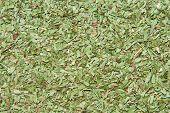 Dried Tarragon Leaves