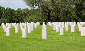 Florida National Cemetery Graves