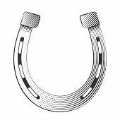 Metal horseshoe